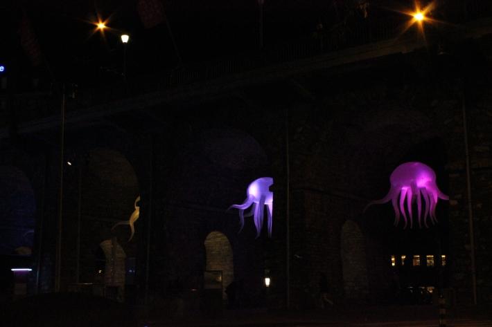 Instalación Medusas Lausanne