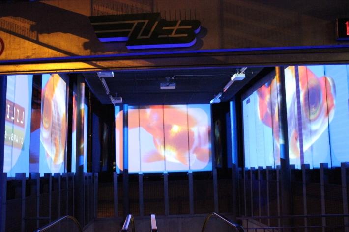 Instalación Acuario. Interior metro