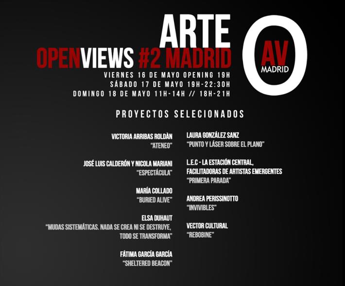 Art Open Views. Proyectos